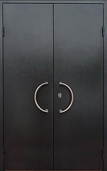 двустворчатая металлическая дверь с порошковым напылением